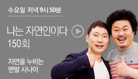 http://www.mbn.co.kr/pages/vod/programContents.php?progCode=592&menuCode=3166&bcastSeqNo=1101456