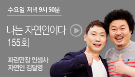 http://www.mbn.co.kr/pages/vod/programContents.php?progCode=592&menuCode=3166&bcastSeqNo=1104068
