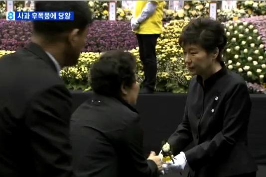'박근혜 대통령 할머니 논란' / 사진=MBN