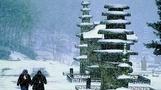 세계유산 잠정목록 등재된 '운주사 석불석탑군', 무엇이 특...