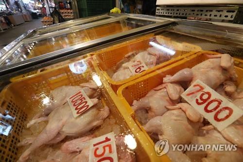 브라질 닭/사진=연합뉴스