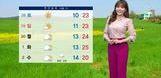 [오늘의 날씨] 남북정상회담일 봄기운 가득…전국 맑고 포근