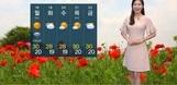 [오늘의 날씨] 단오인 오늘, 불볕더위에 미세먼지·자외선·...