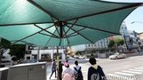 [날씨] 내일(20일) 낮 최고 31도 폭염 주의…대구·경...