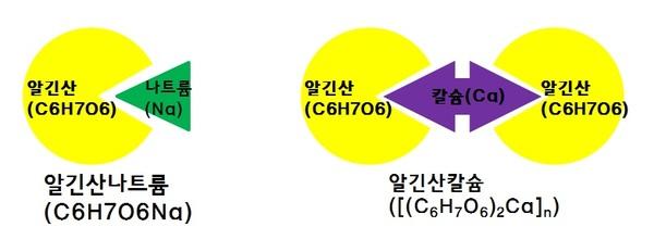 분자모형/ 사진=MBN