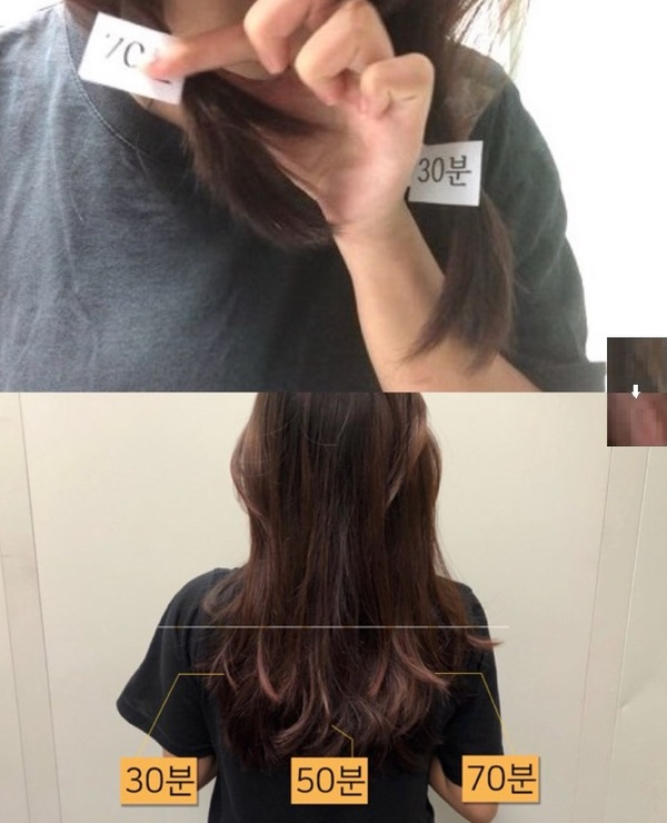직접 머리에 염색해본 결과(위는 염색 전, 아래는 염색 후)/사진=MBN