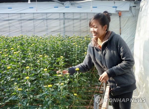 日 농가에서 일하는 베트남 노동자/사진=연합뉴스