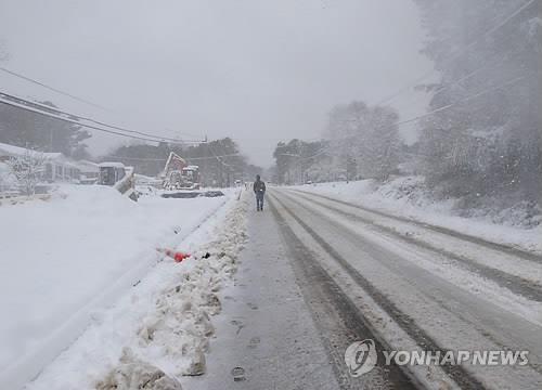 미국 눈폭풍/사진=연합뉴스