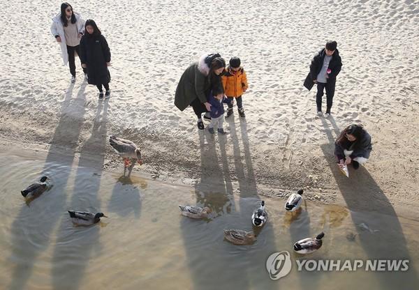 포근한 동해안, 추암 해변 찾은 행락객 /사진=연합뉴스