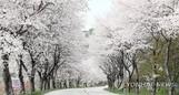 낮 최고 기온 28도 '초여름' 날씨…일교차 크니 건강 관리 유의