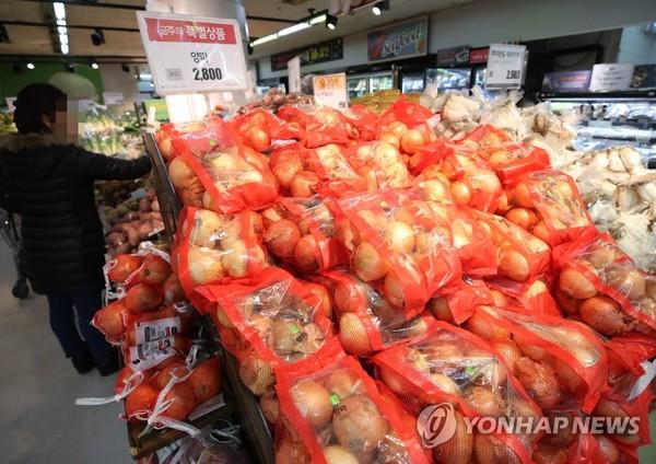 양파 가격 하락 /사진=연합뉴스
