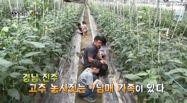 '사노라면' 친환경 농사 고집하는 7남매 아빠, 8년의 노력이 위기에 처한 사연은?