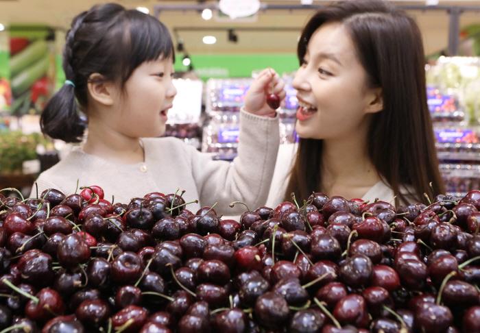 14일 롯데마트 서울역점에서 모델들이 칠레산 체리를 소개하는 모습 [사진제공 = 롯데쇼핑]