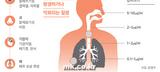 미세먼지 공격에 대처하는 2019년 한국인의 자세