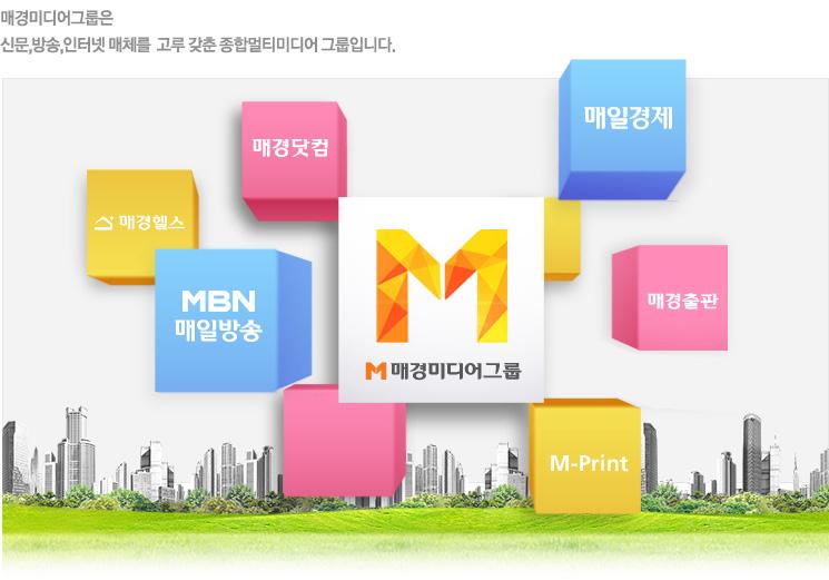 종합 멀티미디어 그룹